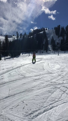 Bear Valley - Had a Great Mar1 day. Well groomed lower bowl. No crowds of course!  Best staff around!  - © BoJangles