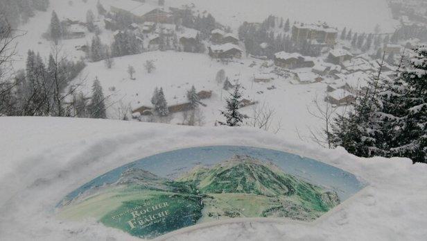 Pralognan la Vanoise - il a neige toute l après midi . - © christinesarda31