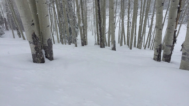Crested Butte Mountain Resort - ShRadical - © Huntorious