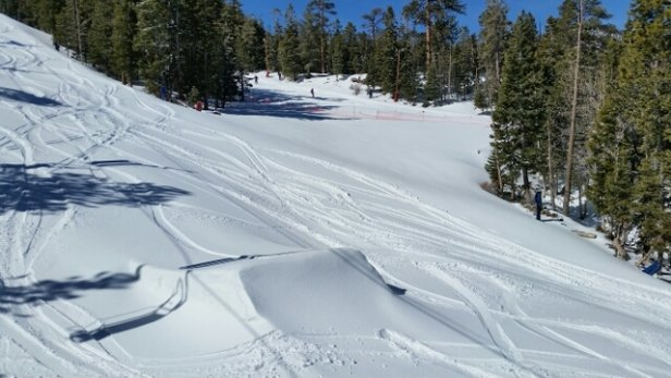 Lee Canyon - Sunny Powder Day in March... - © lvyoopro