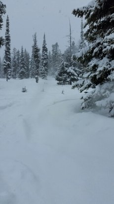 Kimberley - Good Pow  - © Scooterp49