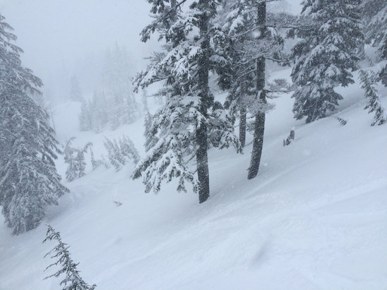 Mt. Bachelor - Epic is not an overstatement for first lift sunday - © dr fun