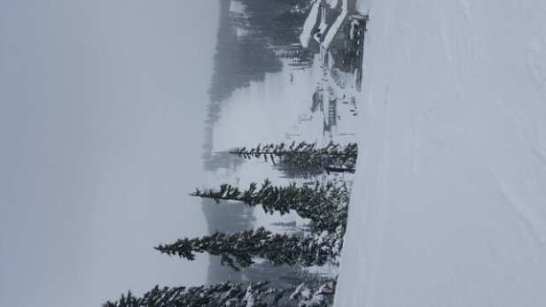 Mt. Hood Meadows - Amazing conditions  - ©dmlddsoms