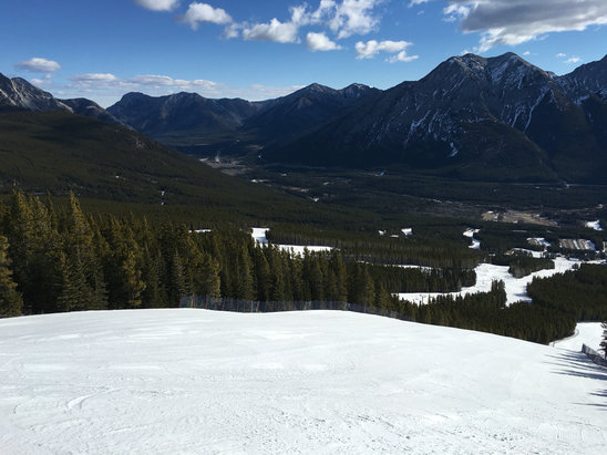 Nakiska Ski Area - Great day.  Sunny, grooming excellent and cold enough the snow stayed solid.  Skiing off the gold and silver.  Even the glades had snow.  - ©iPhone