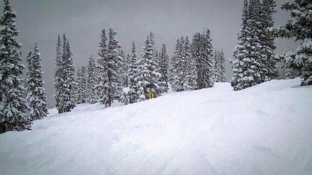 Winter Park Resort - Powder day at the MJ - ©kvernonpt