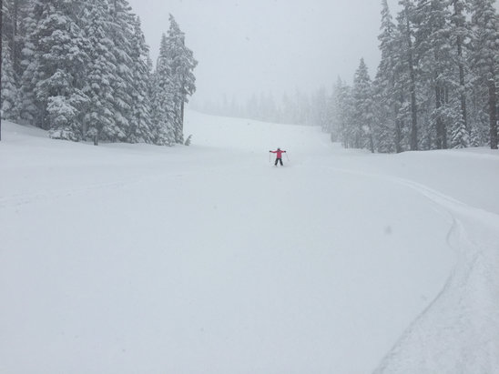 "Willamette Pass - 5"" of POW and still coming down. - © Shadestrades"