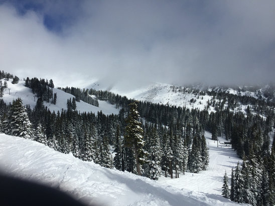Mt. Hood Meadows - Gorgeous at Meadows today. Snow warmed up by noon but early skiing in heather Canyon was great!! - ©Israels iphone