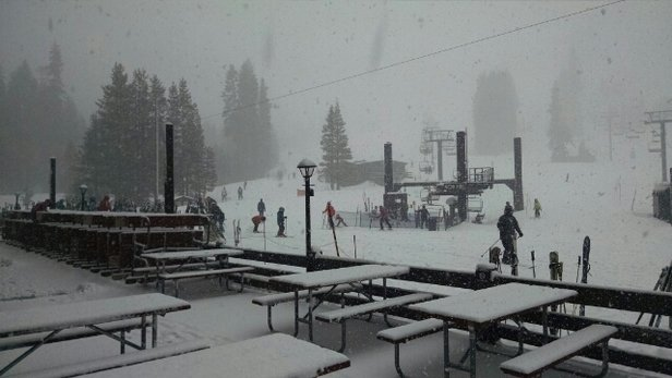 "Sugar Bowl Resort - Light snow last night, 6""+ during the day, epic snow! Picture taken at main base, 1250pm - © cyprisfx"
