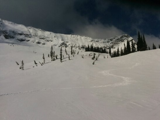 Fernie Alpine - not a bad day for spring skiing. couple cm of fresh snow. becomes real slushy and heavy near the bottom, but the top has some decent caches to be found - © anonymous user