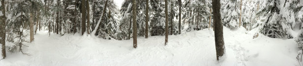 "Stowe Mountain Resort - Alls good, the mountain has received 11"" of fresh pow since the last rain set up.  - © hammertime"