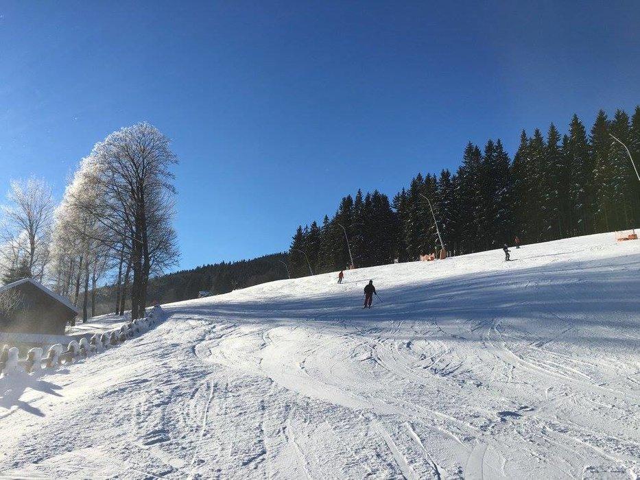 Harrachov 22.1.2017 - ©SA Harrachov facebook