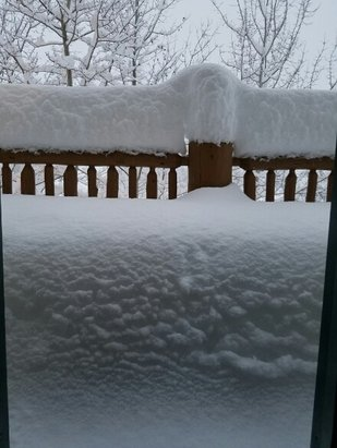 Powder Mountain - at least 18 inches over night a pow day - © anonymous