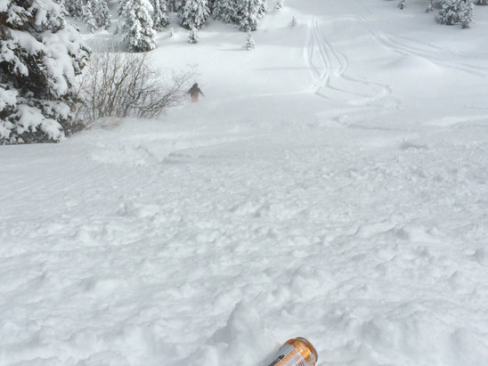 Taos Ski Valley - So much pow! Back side of mountain right side knee deep. Can't go wrong guys and gals  - © iPhone
