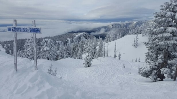 Mt Seymour - I took this yesterday.  Best day of the season so far that's for sure!  I rode from 930-2 and hit fresh powder each run.   - © haywarddaryl