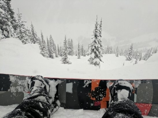 Stevens Pass Resort - Amazing day. Snow all day on the back side - © anonymous