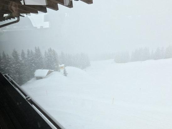 Silvretta Montafon - Heute den ganzen Tag mäßiger bis starker Schneefall. Sicht oberhalb der Baumgrenze max. 30m. Pisten waren gut präpariert. - © Timmi