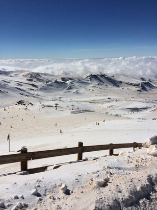 Sierra Nevada - Great skiing up top today - © Roland's iPhone