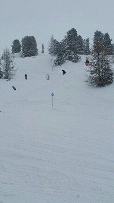 - © skiëen uit het bos