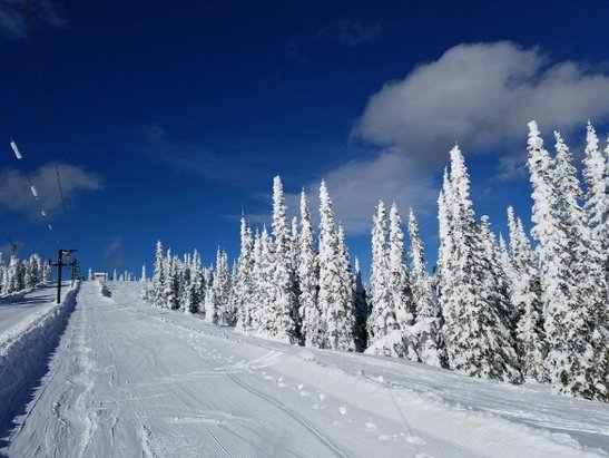 Schweitzer - Wuz a beautiful day. Base is great. Cakey pow, good in spots. Crunchy crunch lettuce turns all day. - © Bwobby