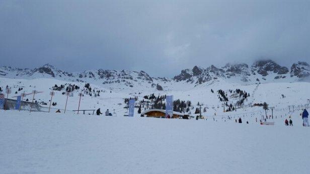 San Pellegrino - Falcade - 20 cm neve fresca - © Anonimo
