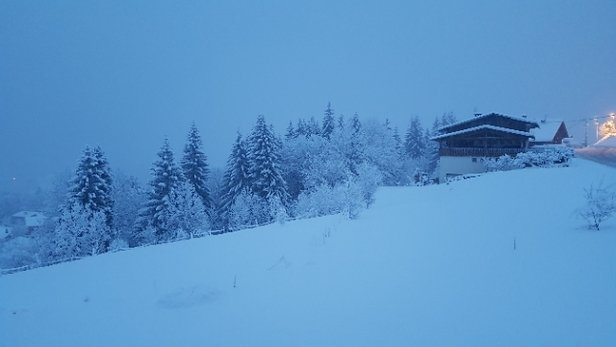 Morzine - Lots of new powder today in Morzine/Avoriaz/Portes de Soleil!! - © anonymous