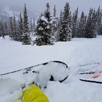 Marmot Basin - unexpected pow day !!!!