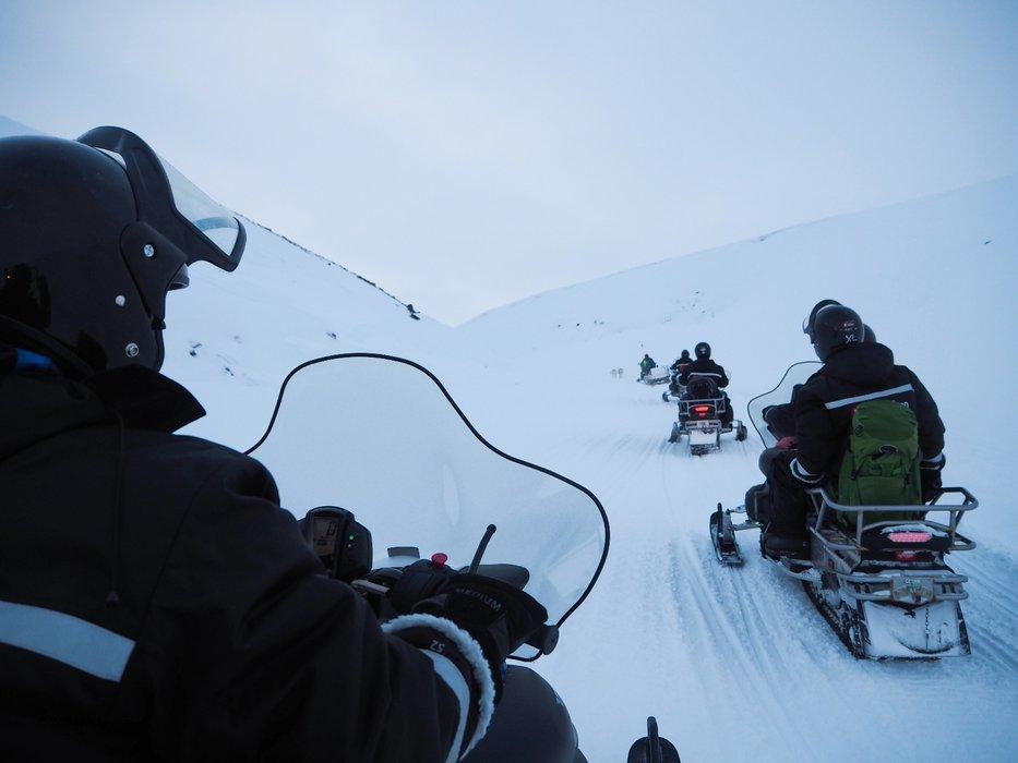 Snøscooterkjøring hører med når man besøker Svalbard. Av og til måtte gruppen vente på reinsdyr i sporene - så eksotisk! - ©Vigdis Skogly