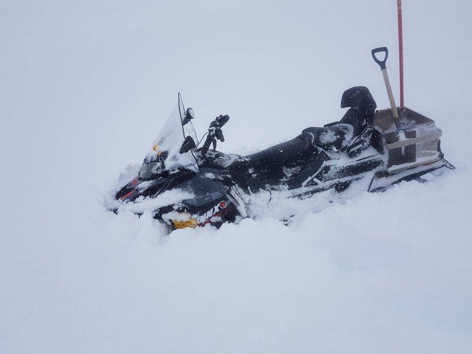 Det har kommet over en meter nysnø i Røldal de siste 7 dagene. - ©Røldal Skisenter
