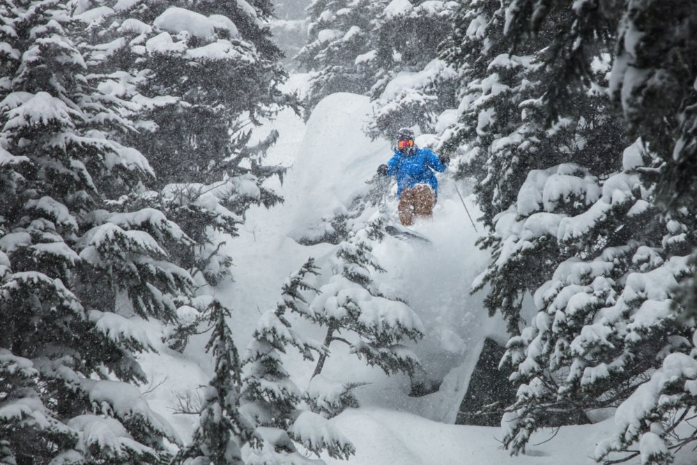 March Madness BC style. - © Mitch Winton / Coast Mountain Photography