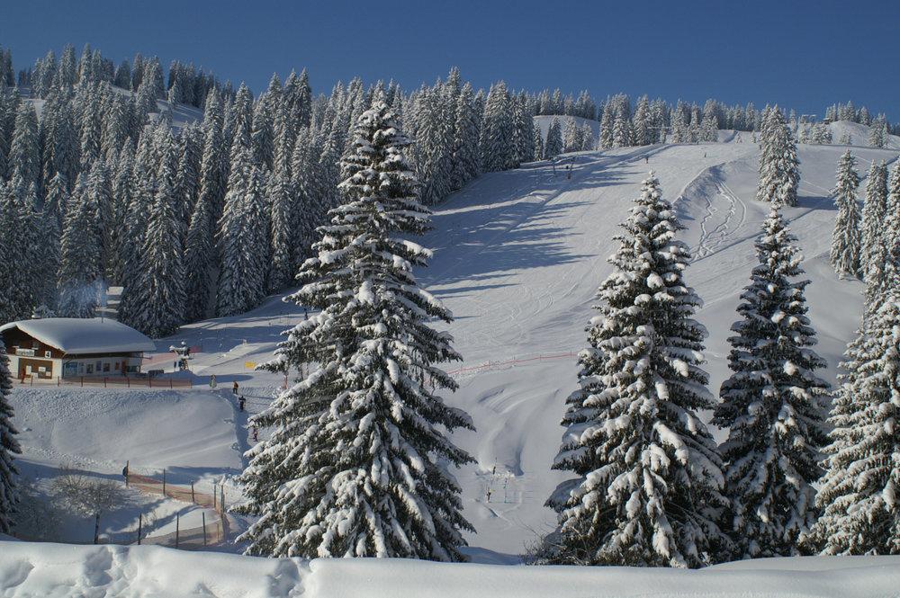Tief verschneites Skigebiet Grasgehren - © © Grasgehrenlifte Betriebs GmbH
