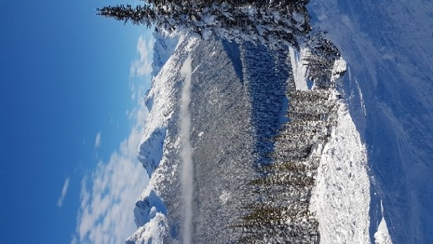 Whistler Blackcomb - Bluebird day - © anonymous