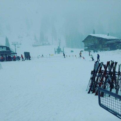 Alta Ski Area - Alta - © anonymous