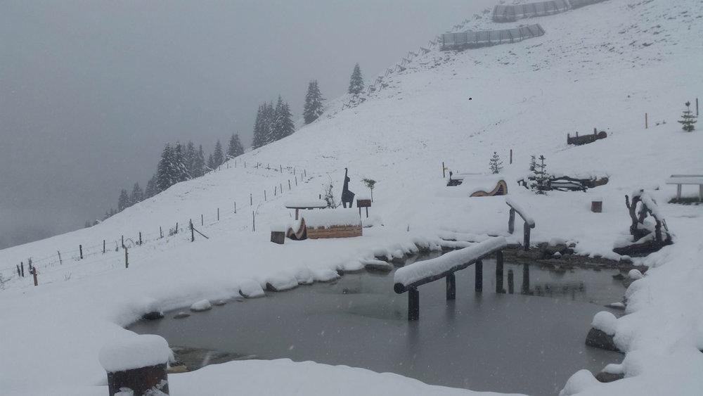 Bichlalm in Kitzbühel - © Facebook Kitzski