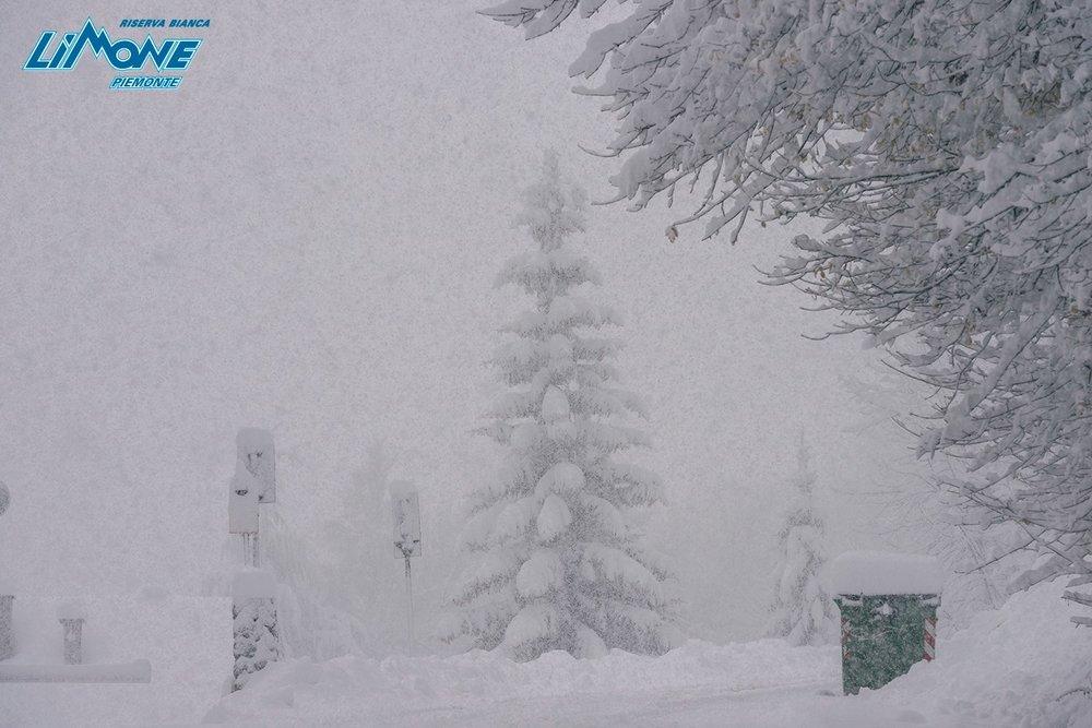 Neve fresca a Limone Piemonte, 6.11.17 - © Limone Riserva Bianca Facebook