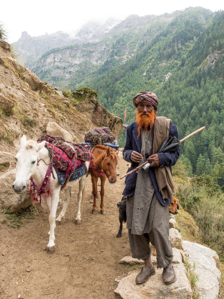 Einziges Transportmittel in Tal von Machal sind Pferde, Mulis und Esel - © Timeline Productions
