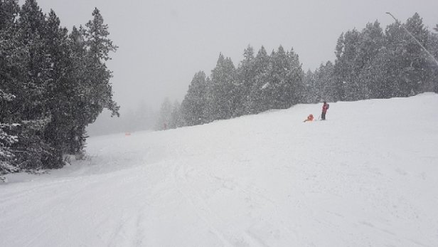 Grandvalira - 5cm and counting - © locobbb