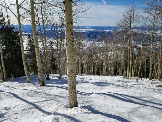 Steamboat - Flew out from NJ. No signs of pow here, and all trails are Icy. Not worth spending $165 here... - © anonymous