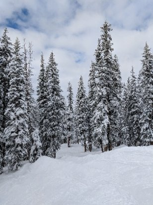 Brighton Resort - Great conditions and lots of fresh snow on Thursday January 11. - © Lena K.