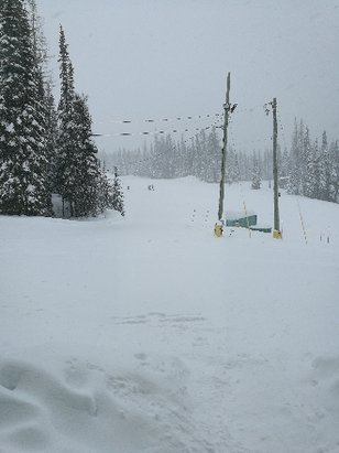 SilverStar - Snowing hard now should be great in the morninghardly a soul on the mountainheading in for a glayva on icehappy kiwis - © anonymous