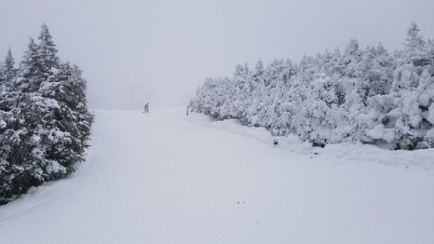 Cannon Mountain - I was there on 1/22.  Good snow conditions, however there was freezing mist which made visibility with goggles difficult. - © CG