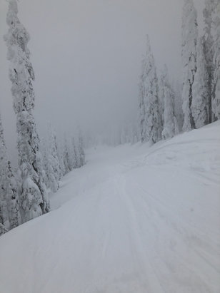 Whitefish Mountain Resort - snowing and so much powder left - © Emily