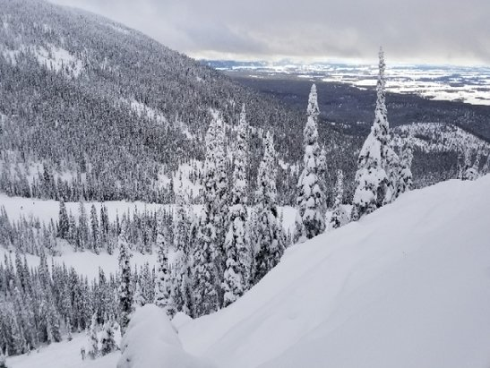Whitefish Mountain Resort - I was here this weekend Thursday, January  25th-29th.
