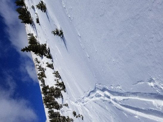Copper Mountain Resort - lots of pow - © anonymous