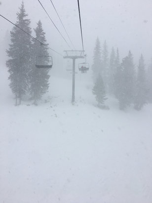 Alta Ski Area - So much powder! Amazing condition!  - © littlebeast