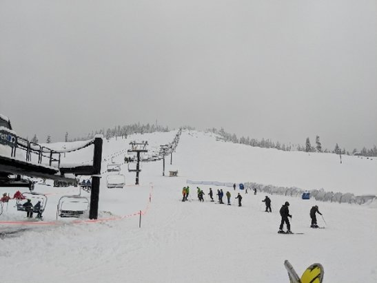 The Summit at Snoqualmie - powder, fluffy, slightly wet, not a lot of people at Summit West - © anonymous