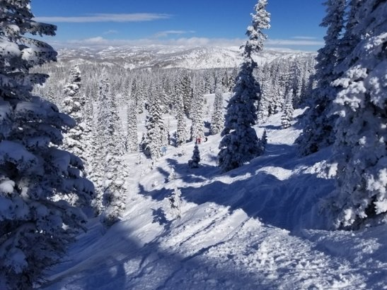 Steamboat - Love Steamboat! Great conditions.  - © vineyardrew
