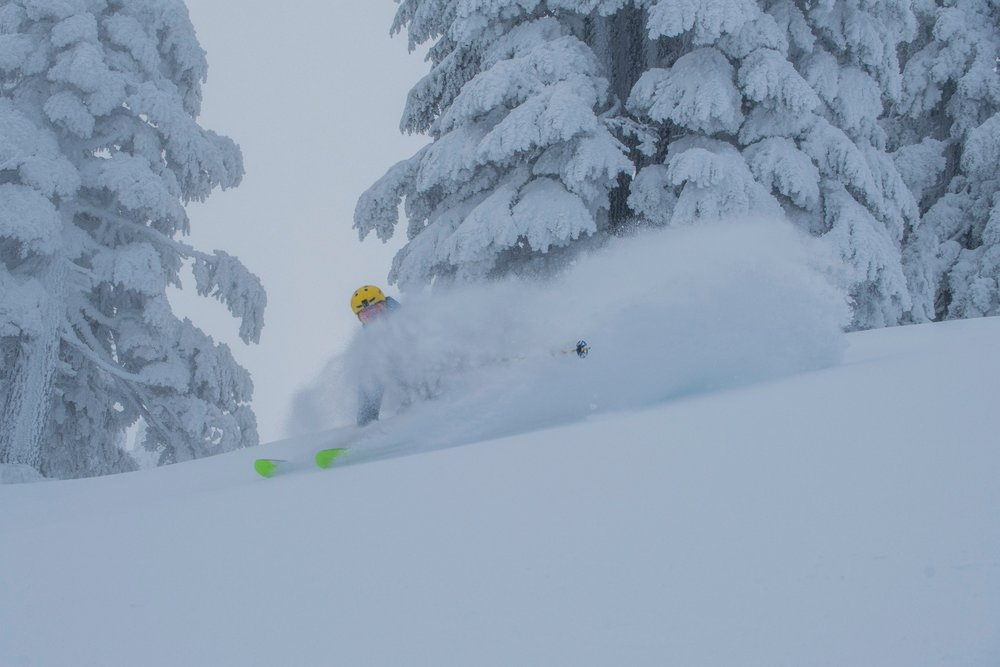 Skier, Rex Shepard getting the post-storm goods in Mt. Bachelor's Outback lift-accessed terrain. - © Mt. Bachelor