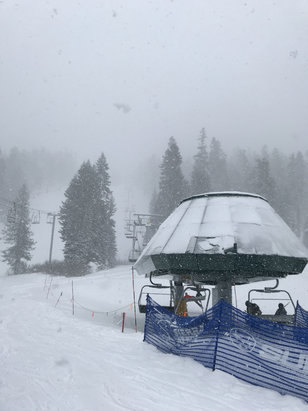 Sierra-at-Tahoe - 2/26 fresh snow. still a little thin in some places. more backside open but westbowl is closed - © Dookie