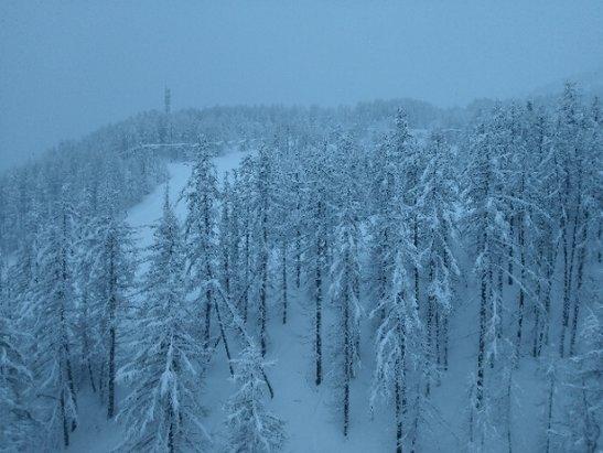 Val d'Allos - La Foux - 2 mars 8h, il neige encore, pas dit qu'ils ouvrent plus de piste qu'hier. - © Florent