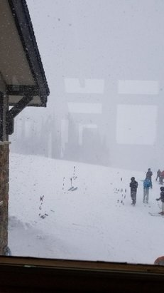 Steamboat - it's coming down! - © anonymous